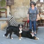 Urlaub in der Toscana