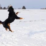 Mara beim Schneeballfangen