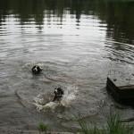Mit Mutter Praline schwimmen